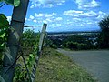 July Panorama Denzlingen - panoramio (5).jpg