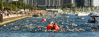 Triathlete swimmers in Chicago's Monroe Harbor...