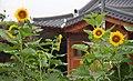 KOCIS Korea Hanok GuestHouse 01 (7596121988).jpg