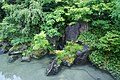 Kai Tsugaru Owani Onsen Aomori pref Japan10s3.jpg