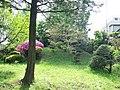 Kaminoge Inarizuka Tumulus (上野毛稲荷塚古墳) - panoramio.jpg