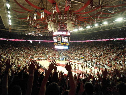 Razorbacks fans call the hogs at Bud Walton Arena during a game vs Kentucky. Kentucky at Arkansas basketball, 2013 006.jpg
