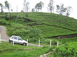 Kotagiri - Kerben village