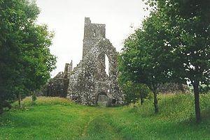 Kilcrea Friary - Friary church exterior