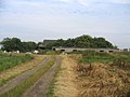 Kimptons Farm, Setchell Fen, Cottenham, Cambs - geograph.org.uk - 260378.jpg