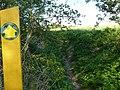 King's Brook path - geograph.org.uk - 1293797.jpg