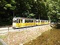 Kirnitzschtalbahn,Wagen Nr.3..Juli 2018.-012.jpg