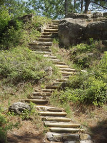 Kisatchie steps.jpg