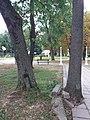 Kiseljak, Smederevska Palanka 04.jpg