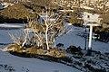 Kosciuszko National Park NSW 2627, Australia - panoramio (84).jpg