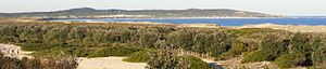 Cronulla sand dunes - Looking north over the Kurnell Peninsula.