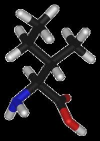 L-isoleucine-3D-sticks.png
