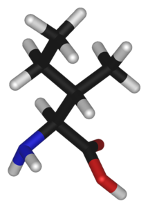 L-isoleucine-3D-sticks.png