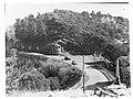 Lake Drive Mount Gambier(GN05772).jpg