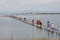 Lake Pomorie 2010.jpg