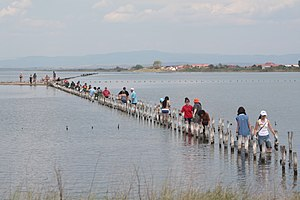 Lake Pomorie - Bird preservation efforts at Lake Pomorie
