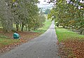 Lane through Launde Park - geograph.org.uk - 600201.jpg