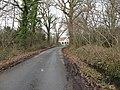 Lane through Stewards Copse - geograph.org.uk - 1142198.jpg