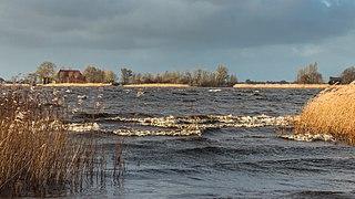Langweerderwielen-Langwarder Wielen. Storm Ciara. 11-02-2020. (d.j.b) 10.jpg