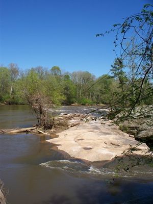 Raven Rock State Park - Lanier Falls on the Cape Fear River as seen from the end of Lanier Falls Trail in mid-April.