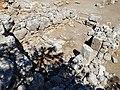Lato Ausgrabungsstätte 121.jpg
