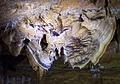 Le grand papillon - Grottes de Trabuc - Gard - France.jpg