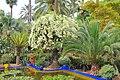 Le jardin des majorelle 15.JPG