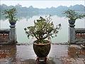 Le lac Hoan Kiem (Hanoi) (4353795320).jpg