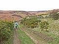 Lead Mining Trail on Edmondbyers Common - geograph.org.uk - 157155.jpg