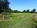 Lede Sasstraat graslanden aan Torensbeek - 228058 - onroerenderfgoed.jpg
