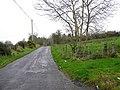 Lenagh Road - geograph.org.uk - 1559344.jpg