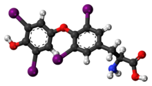 Levothyroxine 3D ball.png