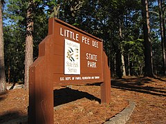 Little Pee Dee State Park, Dillon County, South Carolina.jpg