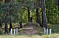 Liubeshiv Volynska-grave of Jews shot-view from road.jpg