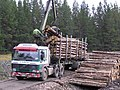 Loading timber in the Naver Forest - geograph.org.uk - 158009.jpg