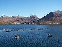 Loch Ainort fish farm - geograph.org.uk - 1800327.jpg