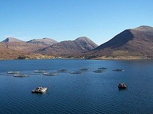 English: Loch Ainort fish farm The salmon farm...