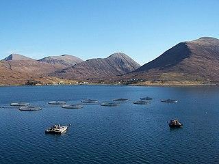 Fish farming Raising fish commercially in enclosures