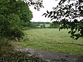 Looking towards Clowance woods - geograph.org.uk - 190507.jpg