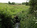 Looking upstream from Pittford Bridge - geograph.org.uk - 453744.jpg