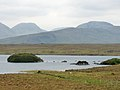 Lough Fee 01 (3585853614).jpg