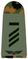 Luftwaffe-031-Hauptgefreiter UA.png