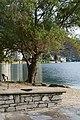 Lungolago di Omegna - panoramio (5).jpg
