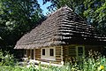 Lviv Szewczenkiw Hay Berezhonka khata SAM 2837 46-101-2056.JPG