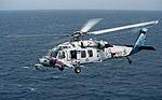 MH-60S Sea Hawk helicopter 130404-N-LP801-216.jpg