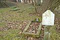 MOs810, WG 2015 8 (Ev. cemetery in Popowo, gm. Wronki) (21).JPG