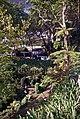 Madeira-64-Park unterhalb Nossa Senhora do Monte-2000-gje.jpg