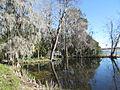 Magnolia Plantation and Gardens - Charleston, South Carolina (8556543722).jpg