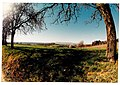 March Spring Countryside - Magic Rhine Valley Photography 1990 - panoramio.jpg