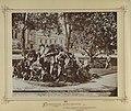 Margitsziget, Indiai növények a Margit-fürdő előtti parkban, 1880-1890 között. - Budapest, Fortepan 82154.jpg